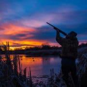 Cree LED Flashlight For Hunting